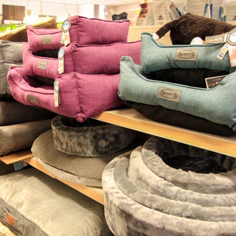 manden en kussens voor dieren